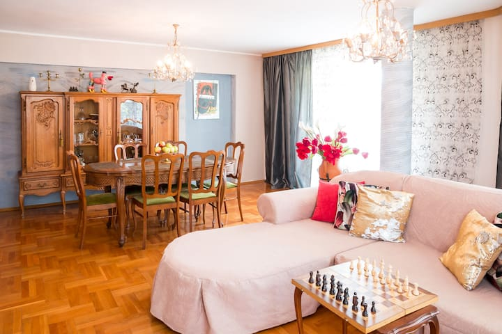 Living room,  sofa bed,  TV, internet,  free wifi,  air conditioning, balcony