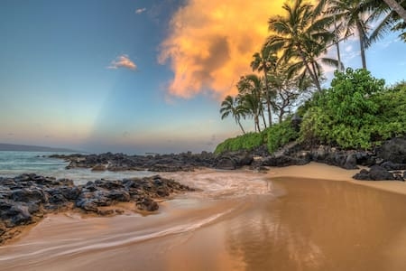 Spectacular Ocean V  fr Top of Wailea Luxury Condo - Kihei