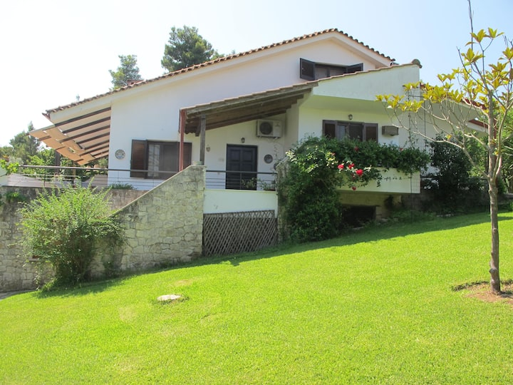 House in Sani,very close to the beach and marina