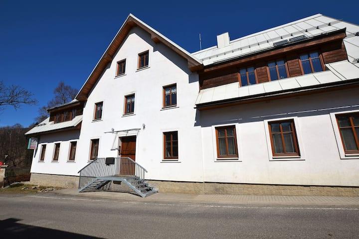 Appartement à Rokytnice nad Jizerou proche domaine skiable