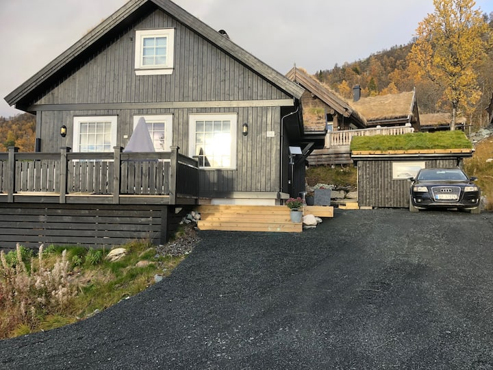 Ny hytte med høy standard i Holtardalen