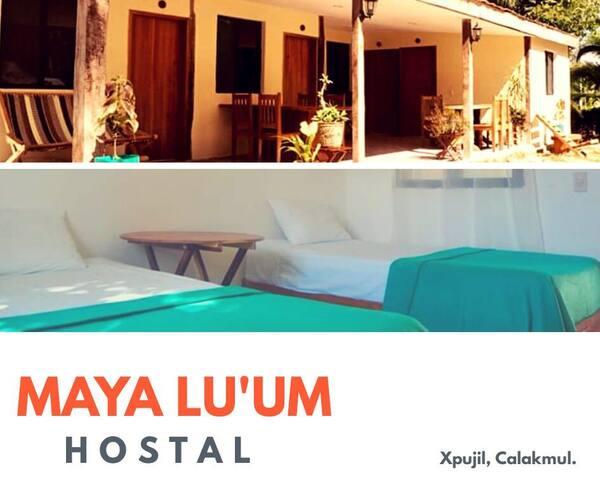 Hostal y camping Maya Lu'um Xpujil
