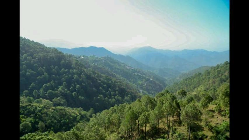 Suite with Jacuzzi and Mesmerizing View - Kasauli - Apartmen