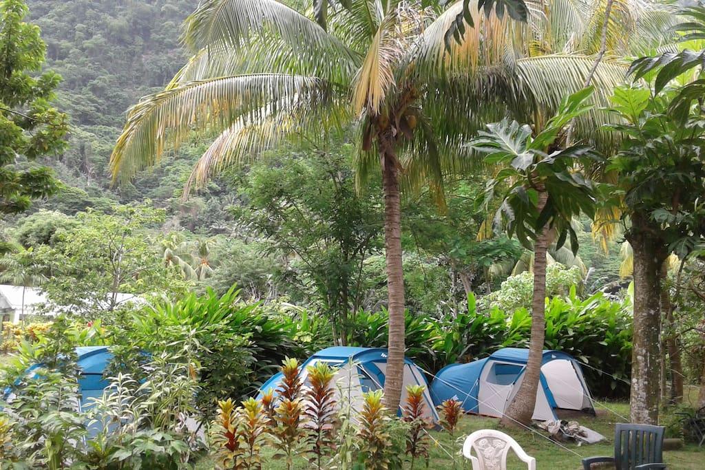 Big banana campground, Kanawa Soufriere