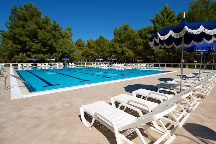 Villette con piscina e spiaggia a 80 metri