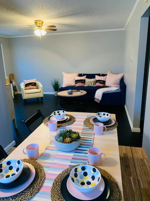 Blue Suede Shoes Apartment near downtown Martin