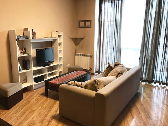 Cozy and Comfortable Apartment in Central Tbilisi