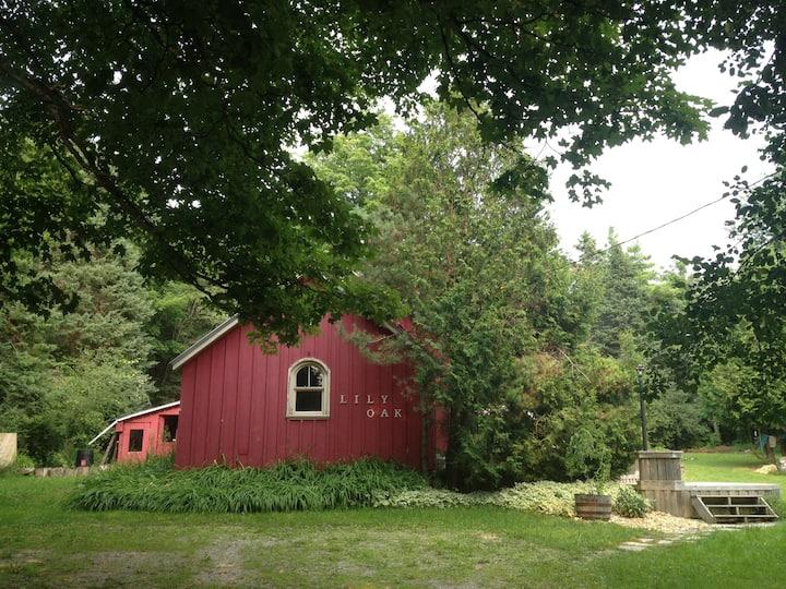 Lily Oak School House: A Charming Rural Getaway