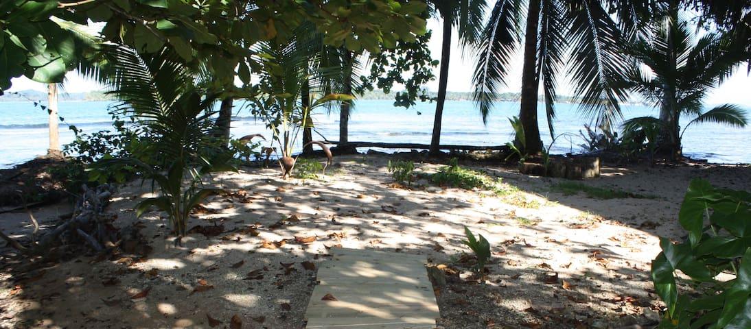 Oceanfront Casa Calabasa Cabina