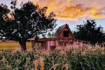 Lundell Family Farm 1 near Zion.