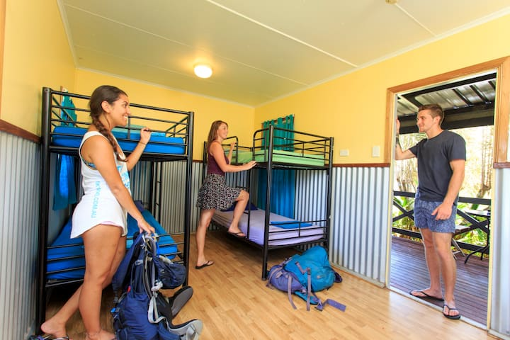Four share dorm room @ Scottys Mission Beach YHA