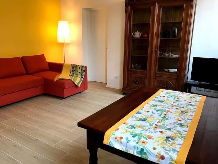 Nuovissimo appartamento nel centro di Pontedera 🛵