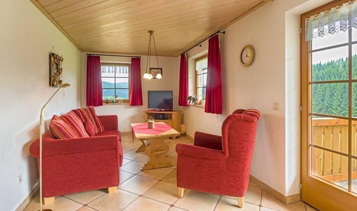 Salenhof, (Titisee-Neustadt), Ferienwohnung Nr.2, Typ C, 70qm, 2 Schlafzimmer, max. 4 Personen, behindertengerecht