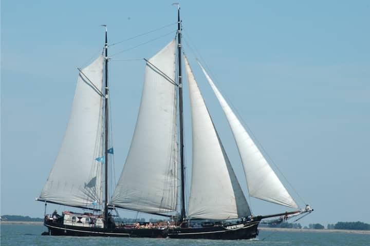 Cosy ship Hannus Antwerp Belgium