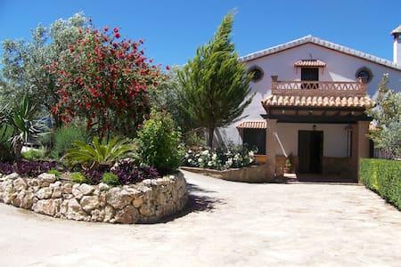 Villa Carlos - ロンダ