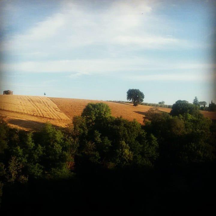 Casa in Borgo toscano: sintesi di storia e natura.