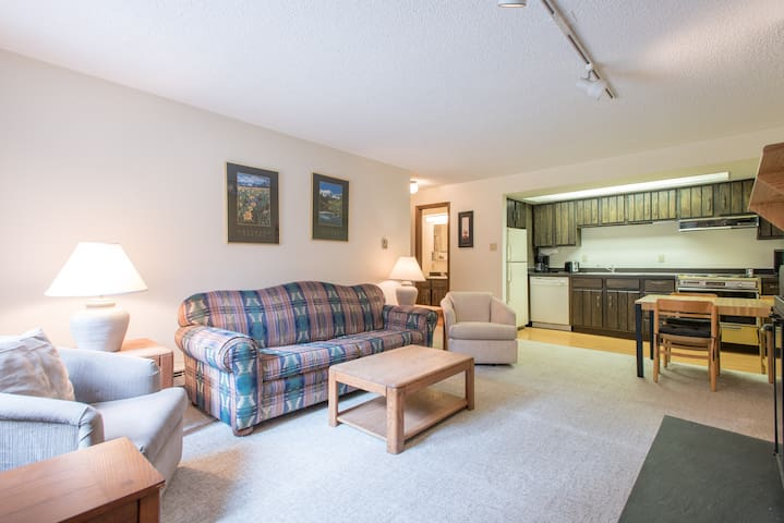 Cozy Ski-in/Walk-out condo, outdoor hot tub, free wifi, & parking, great valu