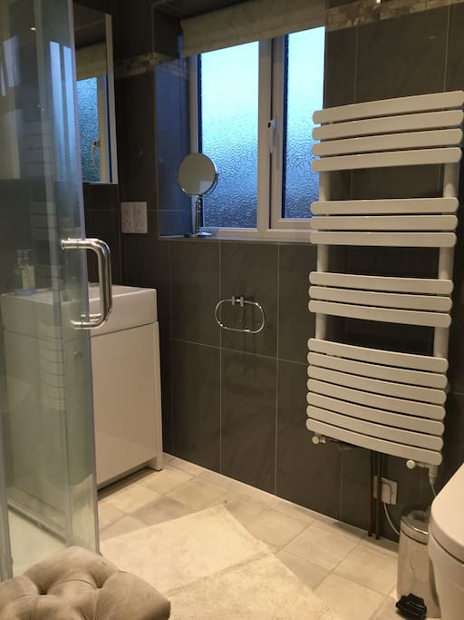 Private Shower room and toilet
