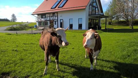 Fewo Fachwerk mit Bergblick in Alleinlage & Sauna