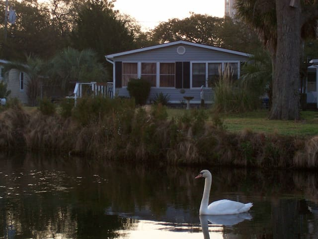 Pond View, Great OSV Location, Walk to Beach