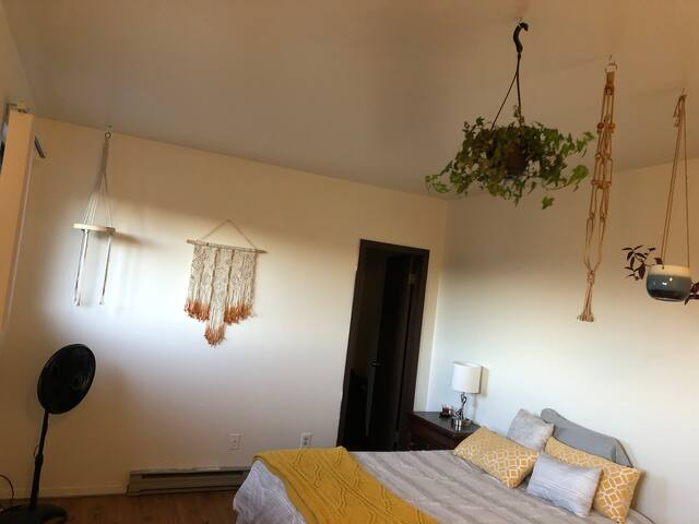 Sunny loft in cute apartment, centrally located