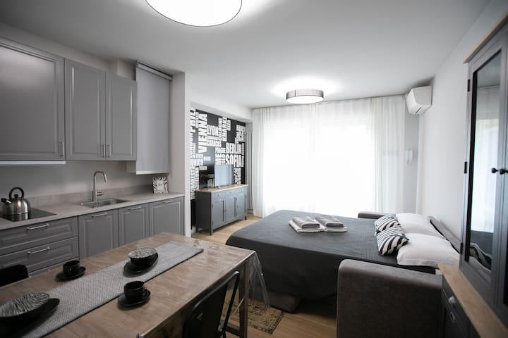 Urban Zebra Modern Studio