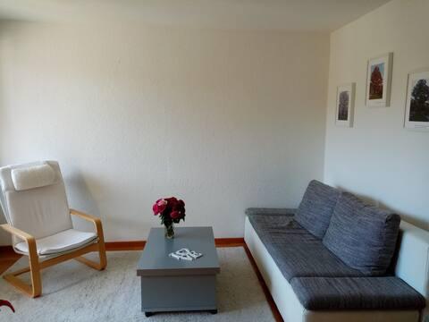 sunny room 3 apt.near Zurich.2nd floor.no lift.