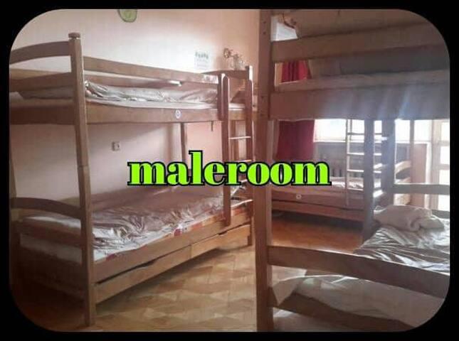 Shamrock hostel