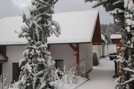 freundliche ruhige Ferienwohnung im Thüringer Wald - Ilmenau