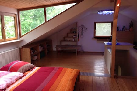 Pure Nature - perfect for relax - central in town - Offenburg - House
