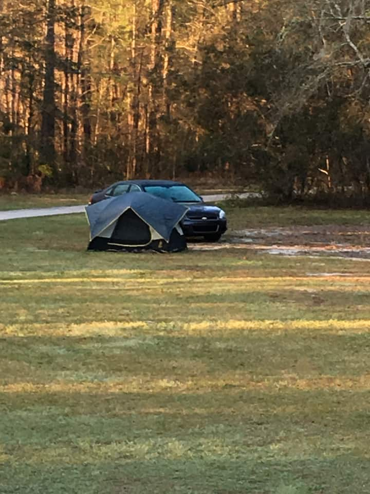 Beautiful open grass tent space  close to savannah