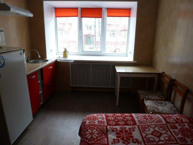 Очень уютная квартира-студия - Tyumen' - Apartamento