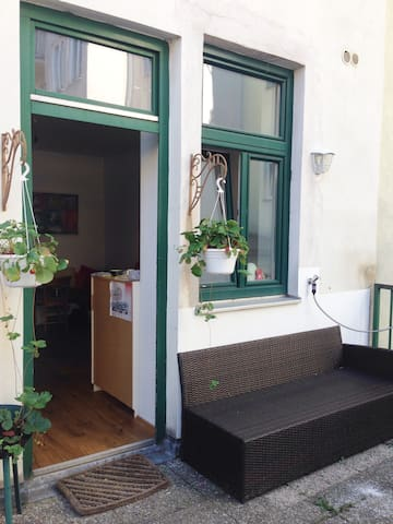 Perfect space with cat and garden