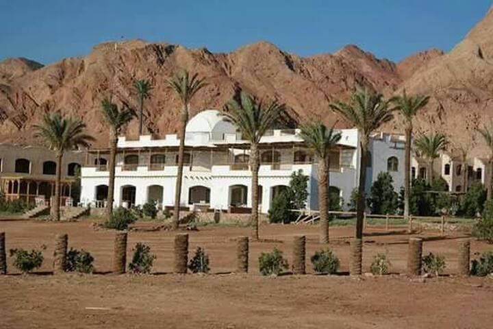 Villa 3bedrooms - Dahab - Villa