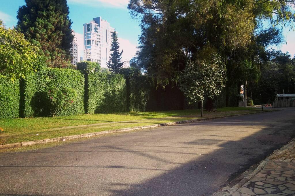 Rua da casa. Tranquila, segura e arborizada.