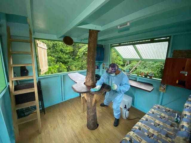 Yocahú Treehouse: rustic tiny house by the river