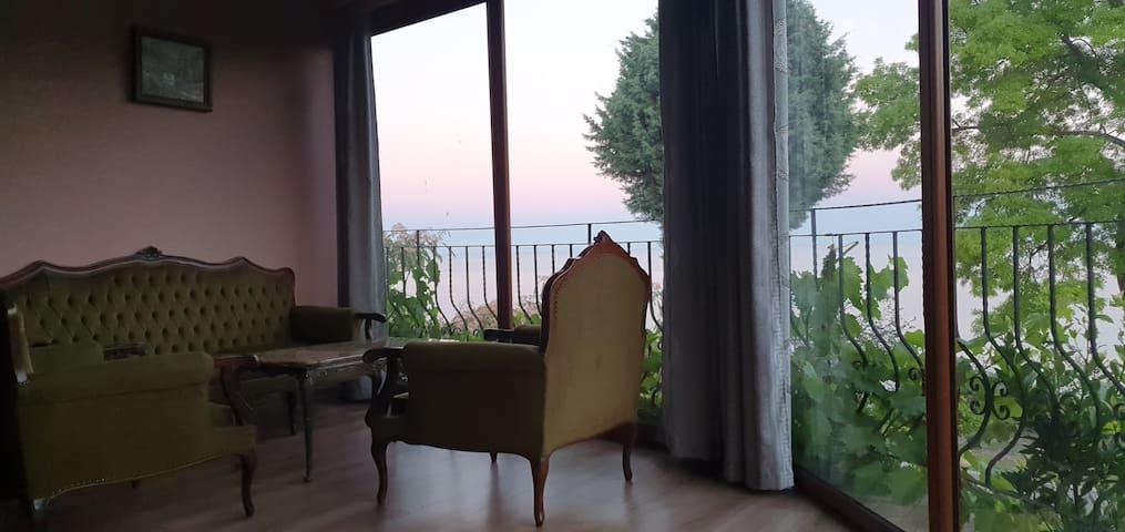 Панорамна гледка Вила Максим, Морска градина, 14