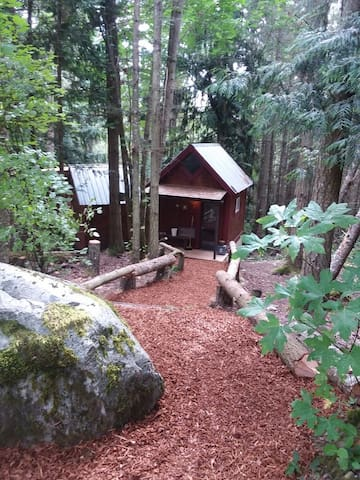 The Owls Nest Cabins: Safety in the Trees
