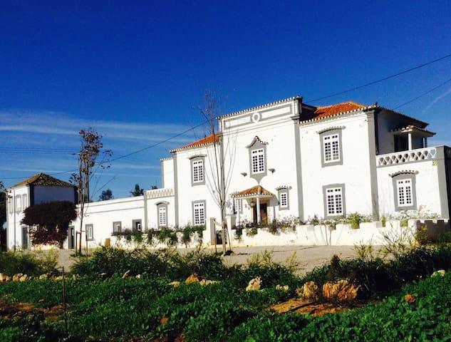 Algarve, near Carvoeiro beach but in rural setting