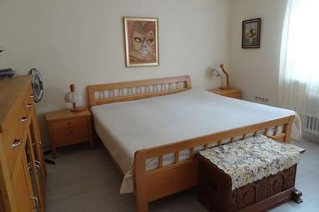 2 spacious guestrooms in the heart of Breisach - Breisach am Rhein - Daire