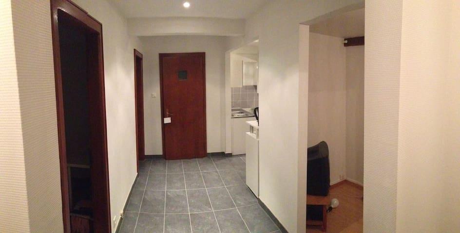 Appartement proche centre ville de Strasbourg