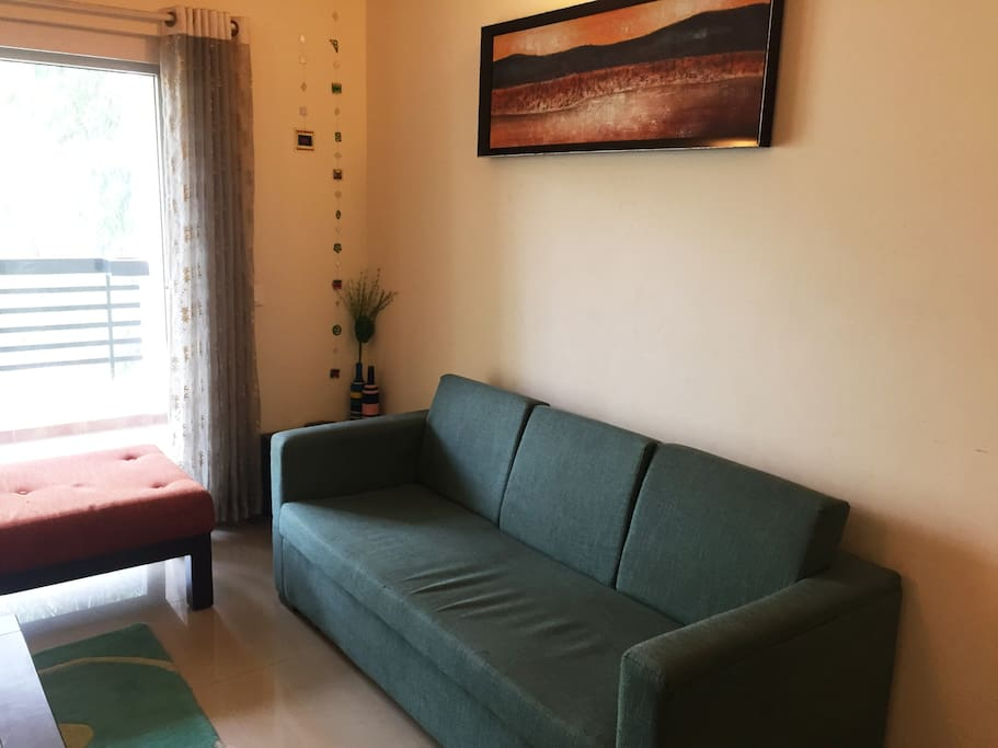 Comfortable Sofas in the living room