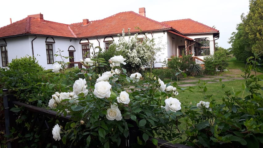 Romanian traditional house