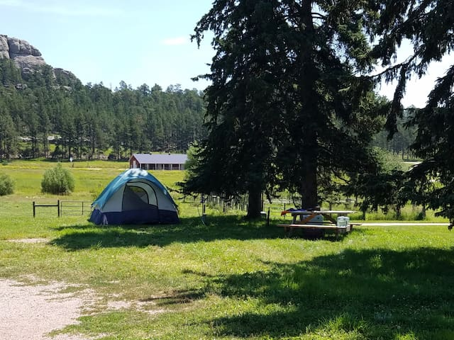 Plenty Star Ranch - Tent Site for 1-4 - No 6