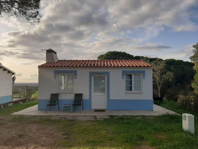 Monte Sardinha - T1