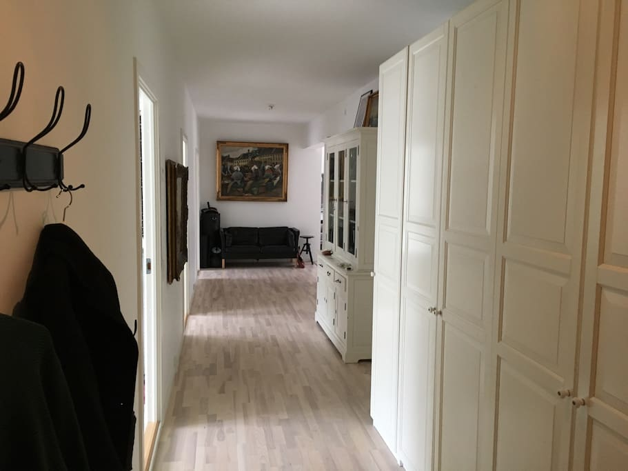Large hallway with hangers. Place for your stuff in the closet.