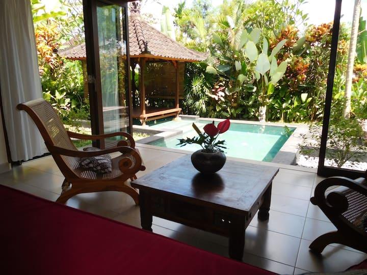 Unique style villa with verandas, garden and pool
