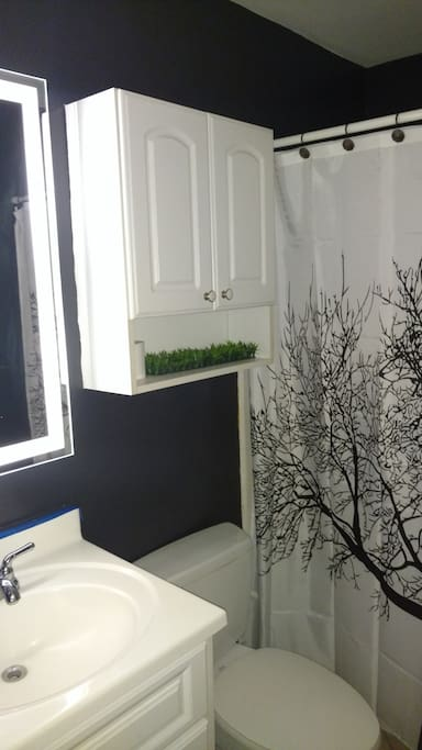 Bathroom with EXCELLENT water pressure!!!