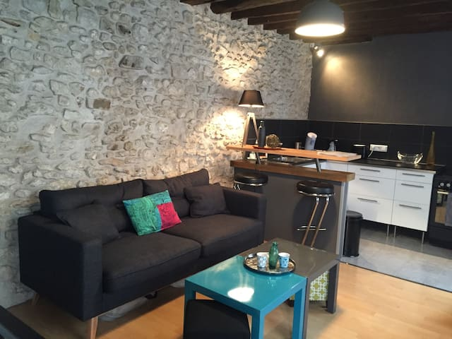 Lovely Cosy&Chic Duplex in Fonty - Fontainebleau - Apartment