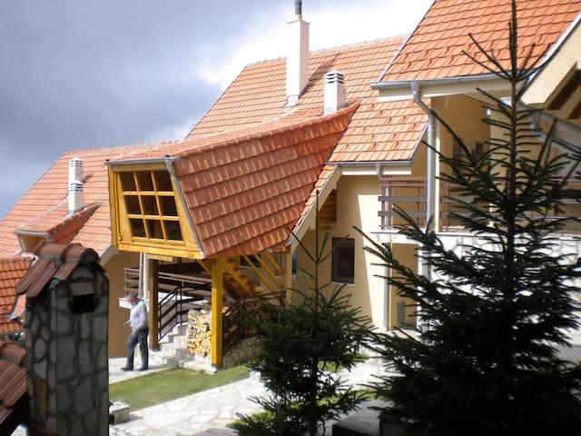 Villa Jovana